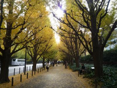 2010年11月 神宮外苑のいちょう祭りに行ってきました。