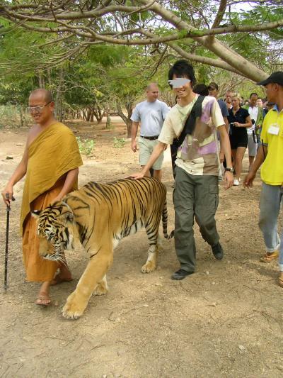 2007年元旦タイガーテンプル(タイ・カンチャナブリ)