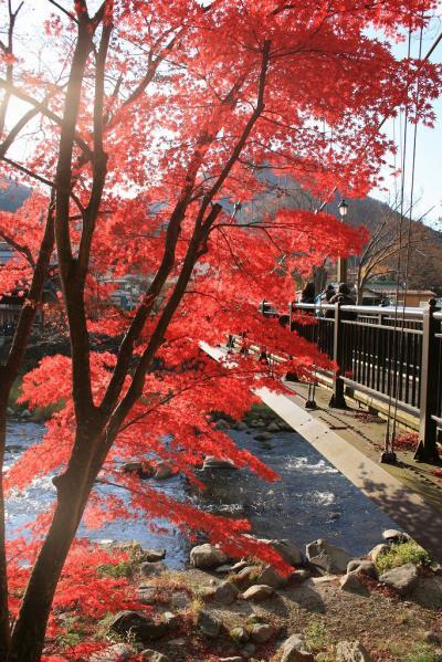 晩秋の紅葉めぐり 鬼怒川~川治~塩原