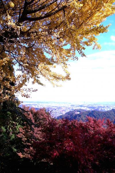 紅葉まっさかりの高尾山2010