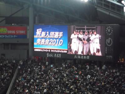日本ハムファイターズ ファンフェスティバル2010(人´∀`) 続編