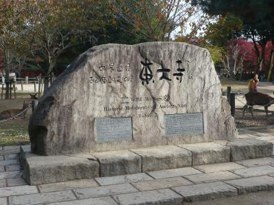 奈良公園に行ってきました♪