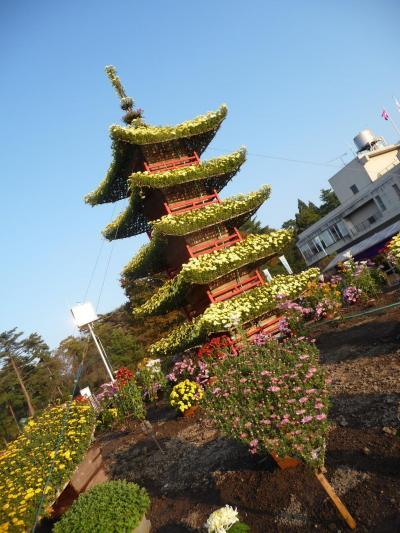 98京丹波町 秘密基地 丹波自然公園 菊花展