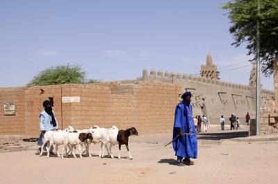 西アフリカ・マリの旅 0・・旅いつまでも・・