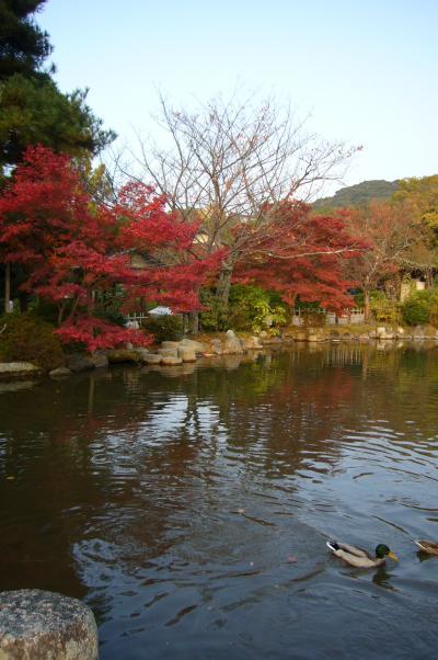 ぷらっと散歩~2010 京都 円山公園と八坂神社~