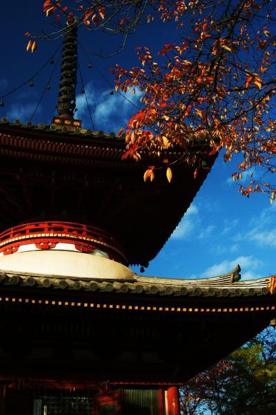 紅葉を求めて小江戸・川越ぶらり旅