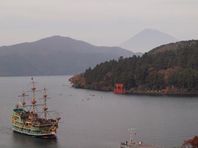 成川美術館とティーラウンジ季節風での富士山を眺めながらのランチ 箱根芦之湯、湯の花温泉付近の紅葉 2010年11月