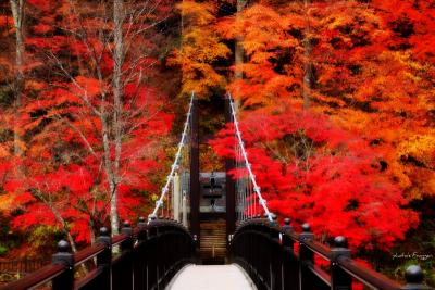 塩原温泉郷の紅葉めぐり。