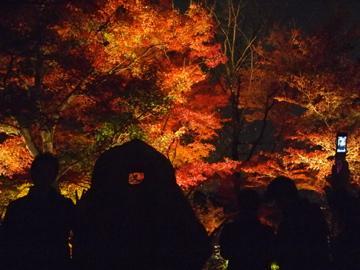 10'清水寺ライトアップ~日本に京都があってよかった~