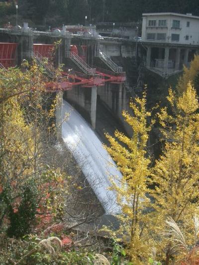 矢作川を矢作ダムと第二矢作ダムに沿って下る。