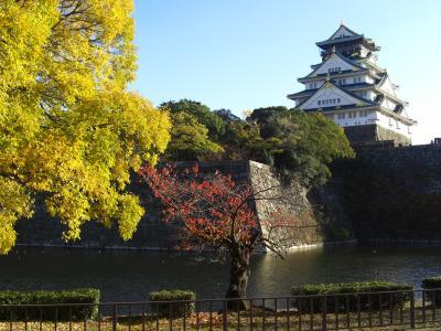 紅葉の三城物語♪第2弾は地元【大阪城】