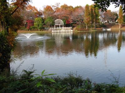 修景池と白い東屋がある晩秋の公園