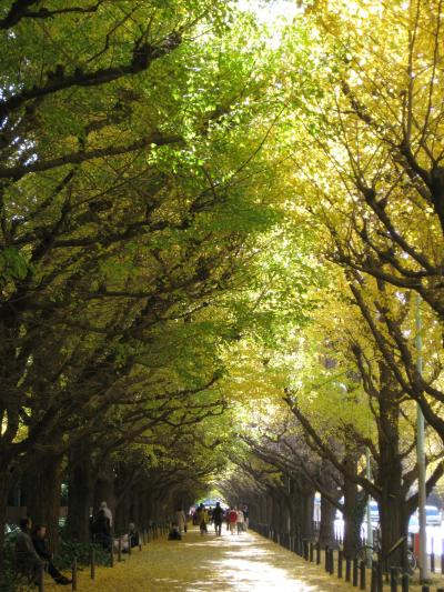 銀杏並木を歩きながら首脳会談を・・・第二回耐える妻の会公式首脳会談 in TOKIO ?