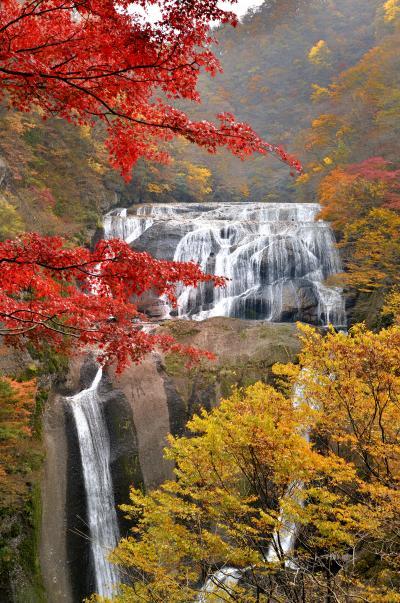 日本三名瀑に数えらる茨城県大子町の袋田の滝の紅葉 2010
