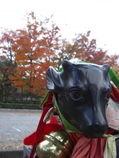 ☆お散歩、紅葉京都☆