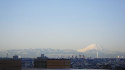 今朝の富士山は、ちょ~、素晴らしかった!!