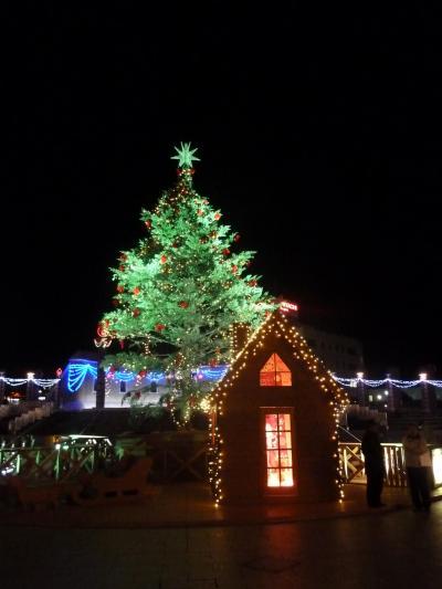 【国内58】2010.12日立出張とんぼがえり-クリスマスイルミネーションがきれいだった
