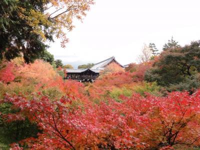 後悔残る・・・ちょっと早い秋の京都♪1人旅