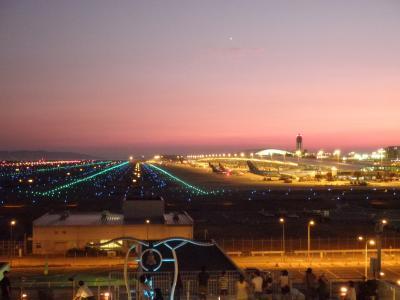 関西空港の風景と阪和線113系