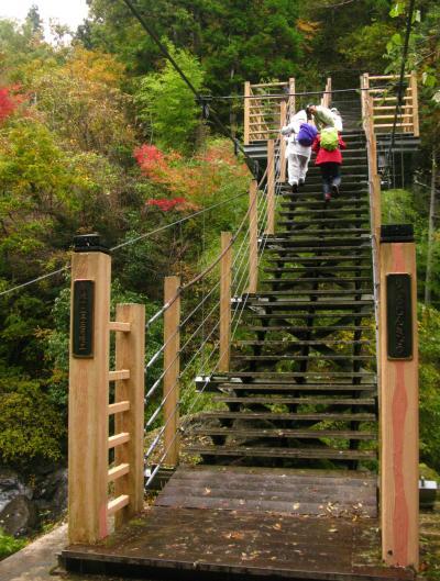 大柳川渓谷ハイキング 紅葉盛りのとき ☆階段状吊り橋も渡って