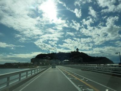 ■2010年11月23日 江ノ島水族館へ行って来ました。