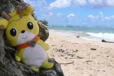 ボク いしきりん!常夏の島 ハワイに行ってきたよ!後編