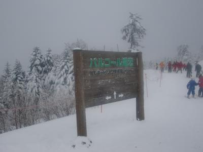 今年、初滑り!!