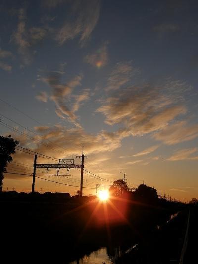 早朝ウォーキングで鷲宮神社に初詣