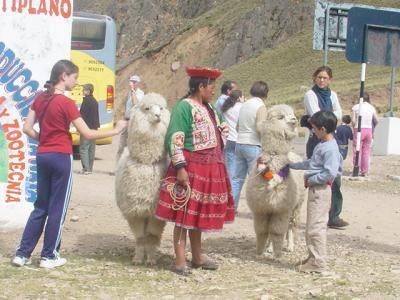 【ペルー・プーノ】アンデスの高原を駆け巡る