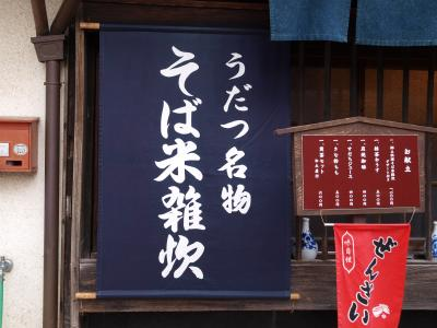 2011年 初旅 阿波の国 徳島へ うだつの町並み 脇町 編