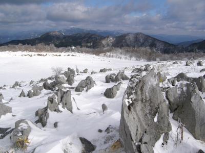 南国土佐でスノーシュー:雪の四国カルスト 天狗高原を歩く