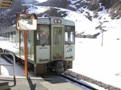 2009年 2月 冬の飯山線の旅 「あら?雪ないね~」