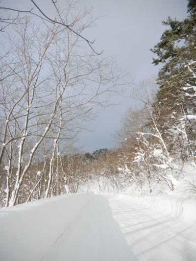 大寒の日の青森出張(2)十和田湖