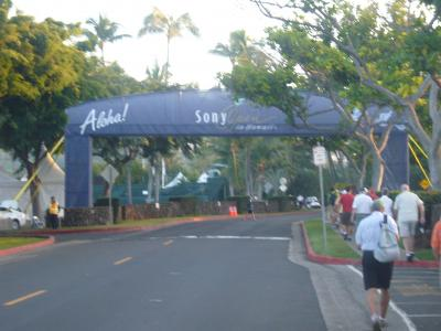 2011 Sony open in Hawaii 観戦