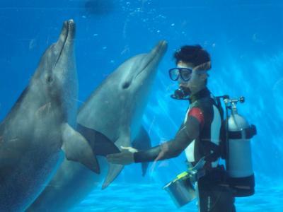 沖縄美ら海水族館のジンべエザメやマンタに感動