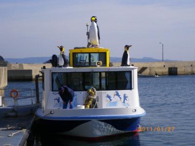 橘湾をグラスボートでクルージング