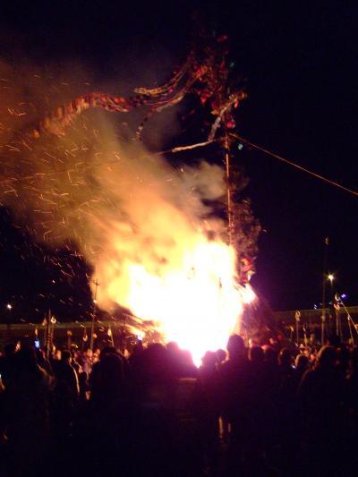 湘南に春がやってきた ~二宮の菜の花畑&大磯の火祭り「左義長」~