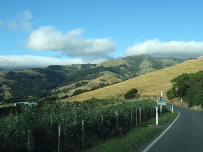 2011 ニュージーランドひとり旅再び★アカロア編