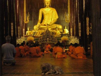 リストラ・リハビリ・心の旅 タイ チェンマイ 旧市街