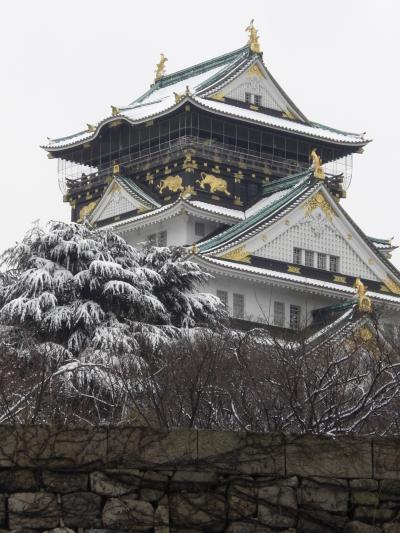 雪の大阪城 寒っ!!!大阪にも雪が! 梅とメジロ