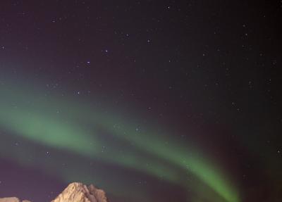 気楽にオーロラ 船の旅 in Norway  ( 6日目 北極圏に突入!そしてついに・・・  ボードーほか )