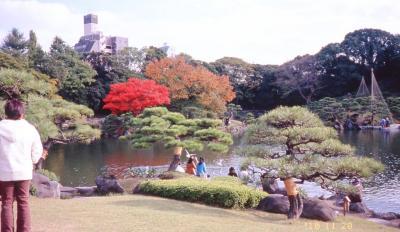 庭園・清澄庭園