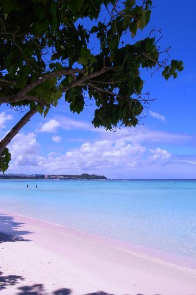 グアム旅行~スカイダイビングで空を飛んでビーチでのんびり~②