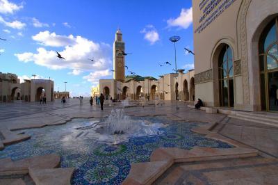 2011年 1月 モロッコの旅 ② フェズ~カサブランカ