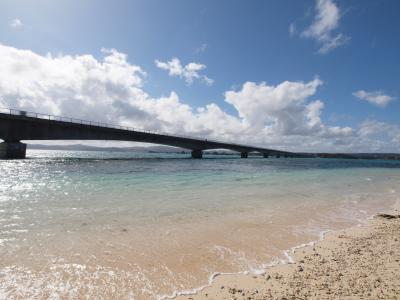 2011年最初の沖縄旅行