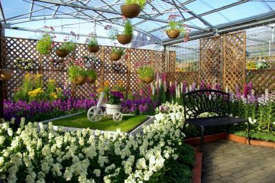 春の息吹を感じて 京都府立植物園 「花の回廊 第6回早春の草花展」