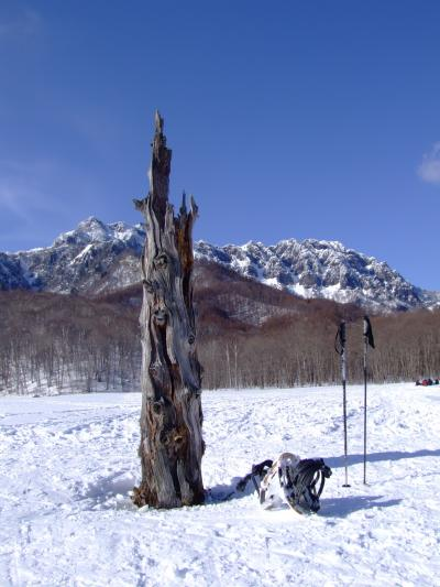 ~雪歩き~ 冬の戸隠奥社から雪の鏡池の上を歩く かんじきハイク