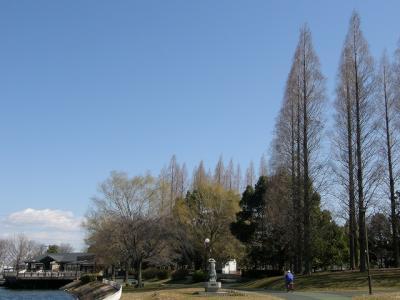 久喜菖蒲公園を歩く