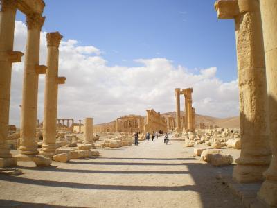 中近東(レバノン、シリア、ヨルダン、イスラエル、アラブ首長国連邦)13日間旅行記3 シリア(ホムス、パルミラ遺跡)編 2011