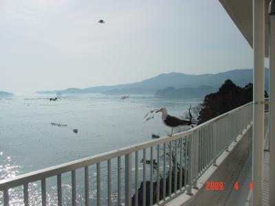 宮城県 南三陸町【ホテル観洋】 復興を祈ります